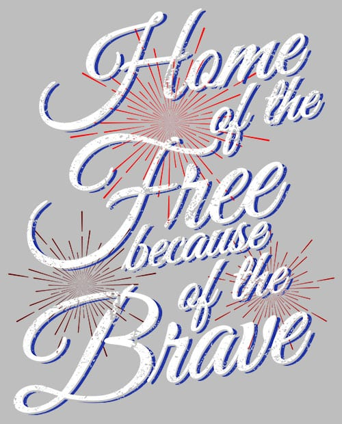 Home Of The Free Because Of The Brave Graphic T-Shirt main vector design