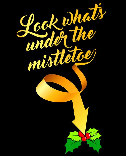 Look What's Under The Mistletoe Graphic T-Shirt main vector design