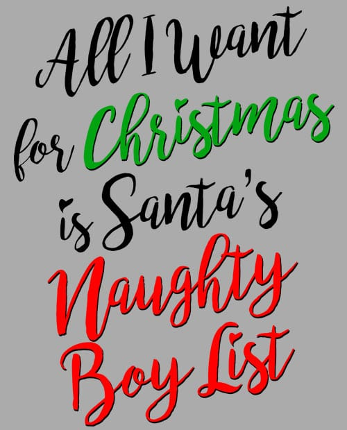 All I Want For Christmas Is Santa's Naughty Boy List Graphic T-Shirt main vector
